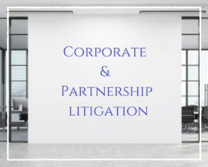 Corporate and Partnership Litigation